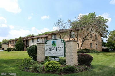 Springtree Apartments
