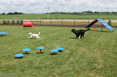 Grand Arbor Reserve - Outdoor Dog Park and Agility Course