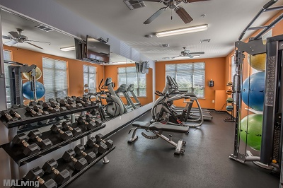Wingra Point Residences - Fitness Center with Club Grade Equipment
