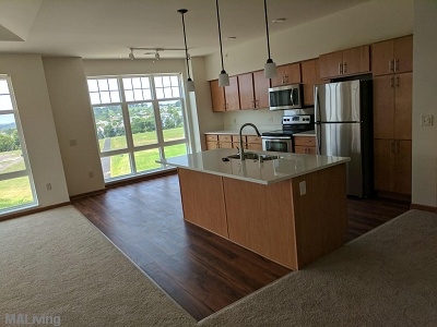 Paragon Place at Bear Claw Way - Stainless Steel, Energy-star Rated Appliances