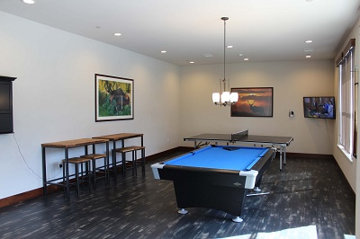 Timber Valley - Game Room